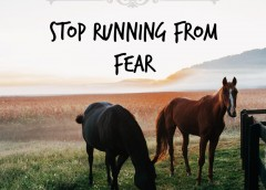 Stop Running From Fear